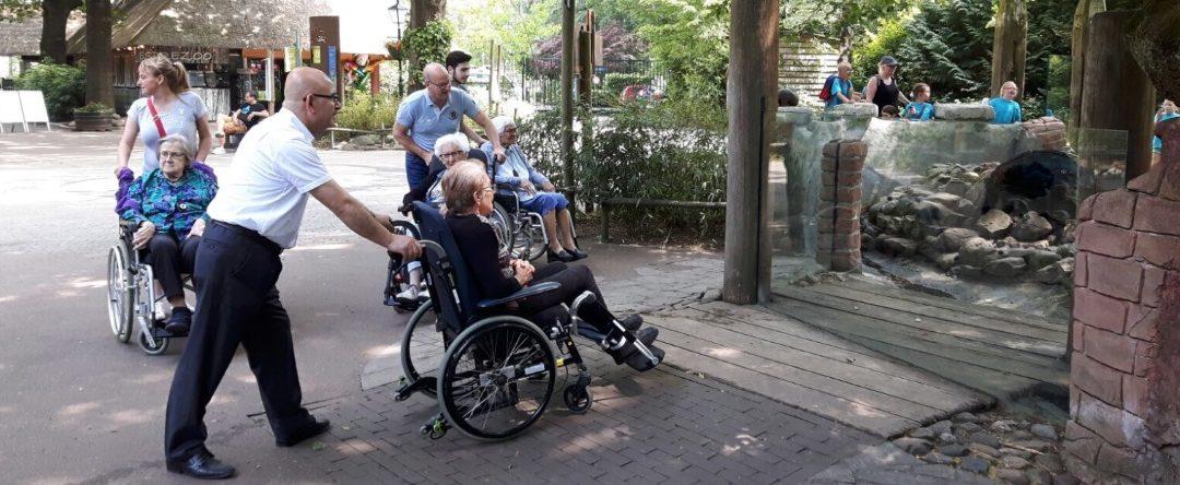 Matchpoint Newasco De Hoop in dierenpark