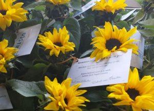 bloemen voor onze zonnetjes
